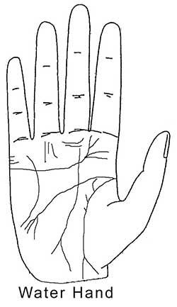 Vedic Palmistry: Your Destiny Is In Your Hands - Vedic