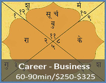 vedic career counseling business chart