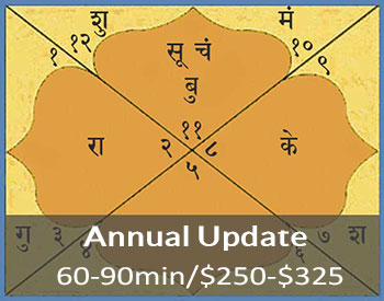 Vedic chart annual reading